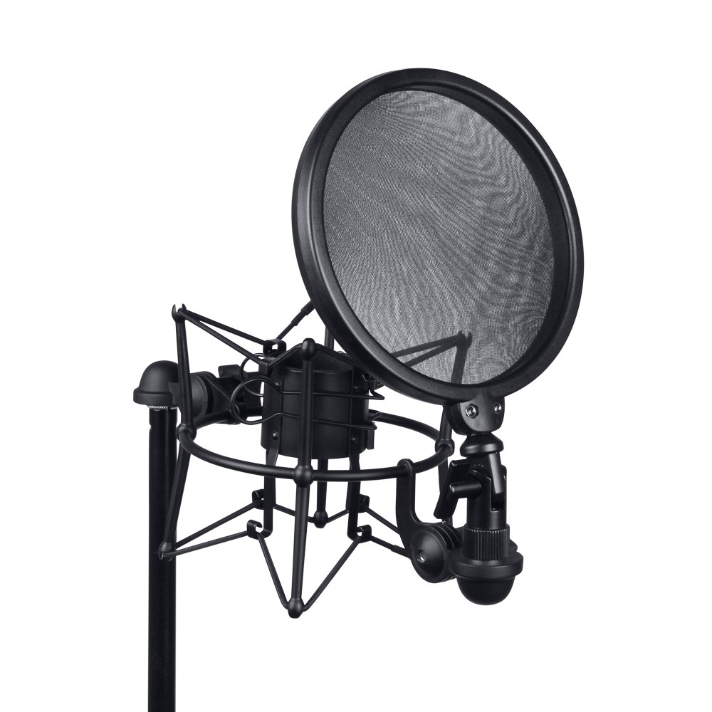 DSM 400 Mikrofonspinne mit Pop Filter