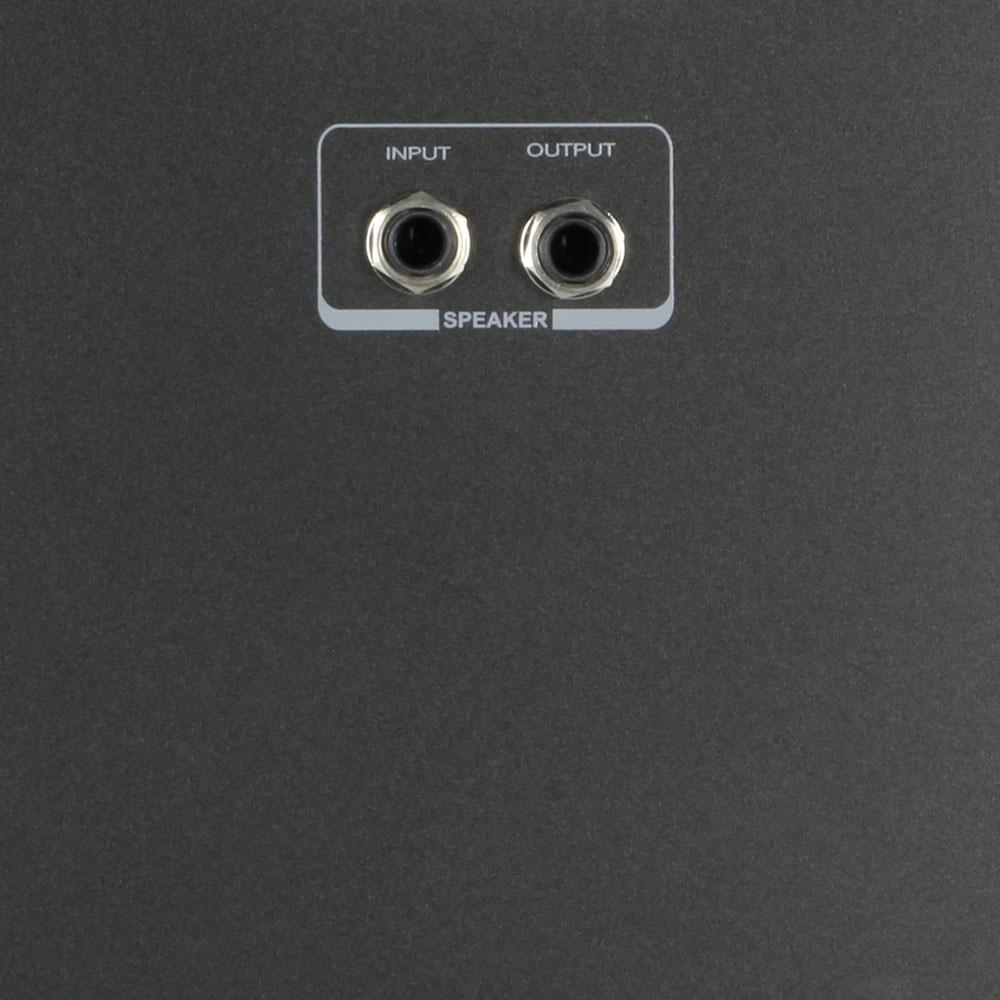 Roadman 102 SP Enceinte de Sono Portable Esclave